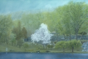 Spring Storm, Innisfree