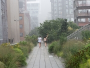 Summer Shower on the High Line